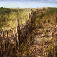 Beach Fence with Pastel